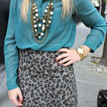 Gray Leopard & Green