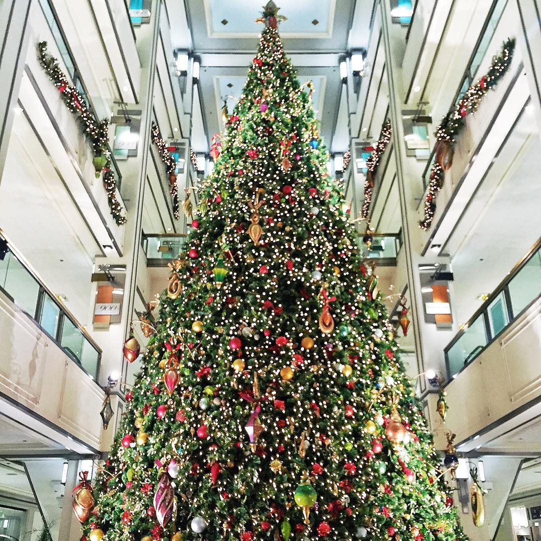 Big Christmas Tree in Chicago at 900 N Michigan Avenue Magnificent Mile