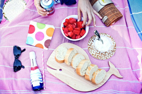 brunch picnic in the park