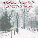 15 Things To Do in NYC This Winter