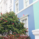 A Photo Diary: Notting Hill, London