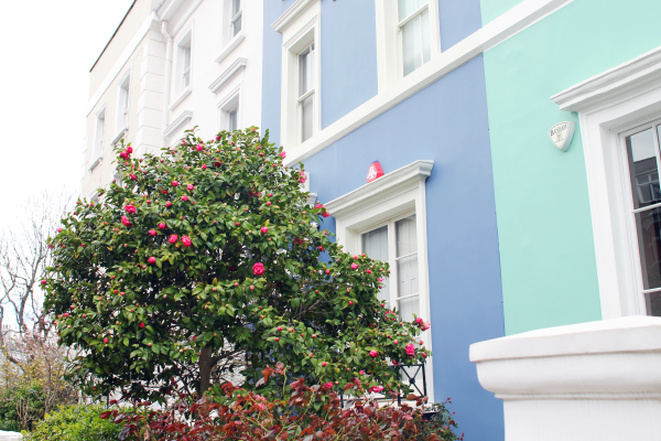blue-and-green-houses-notting-hill-london