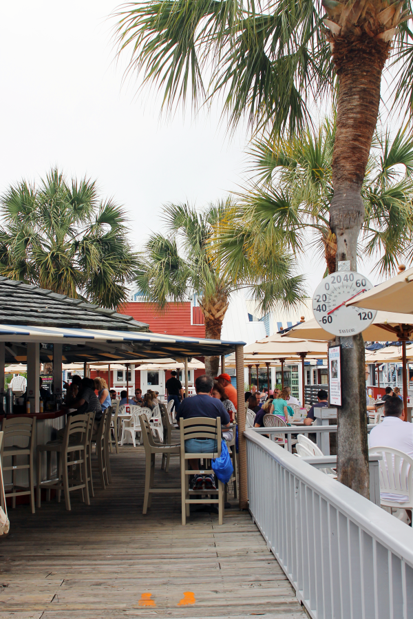 salty-dog-cafe-outdoor-seating