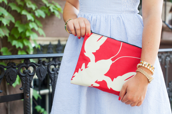 tibi lobster pouch