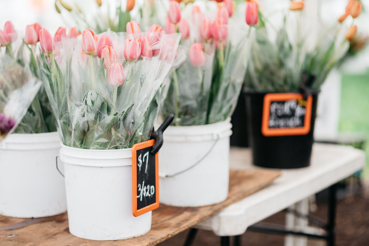 Tulips at Green City Market outdoor farmers market in Lincoln Park in Chicago.