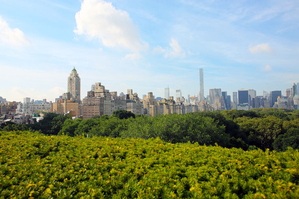 Rooftop view from the Metropolitan Museum of Art in Manhattan in NYC (The Met Skyline View)