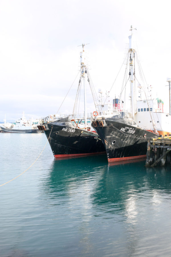 Bows & Sequins Iceland Travel Guide: Boats in Reykjavik Marina