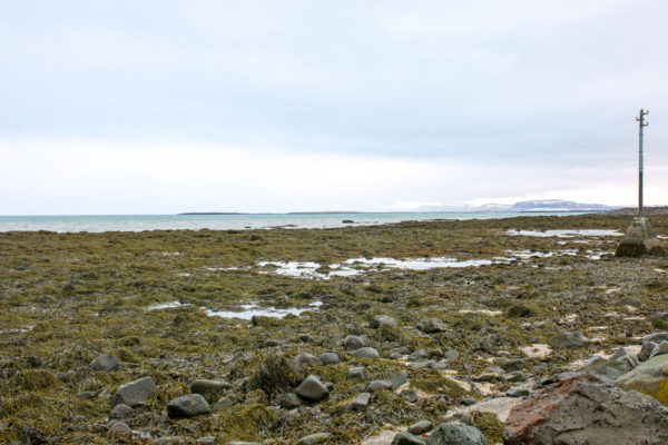 Bows & Sequins Iceland Travel Guide: Grotta Lighthouse
