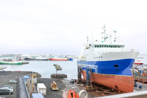 Bows & Sequins Iceland Travel Guide: Reykjavik Marina