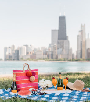 Bows & Sequins hosting a picnic along Lake Michigan.