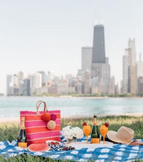 Bows & Sequins hosting a picnic along Lake Michigan.