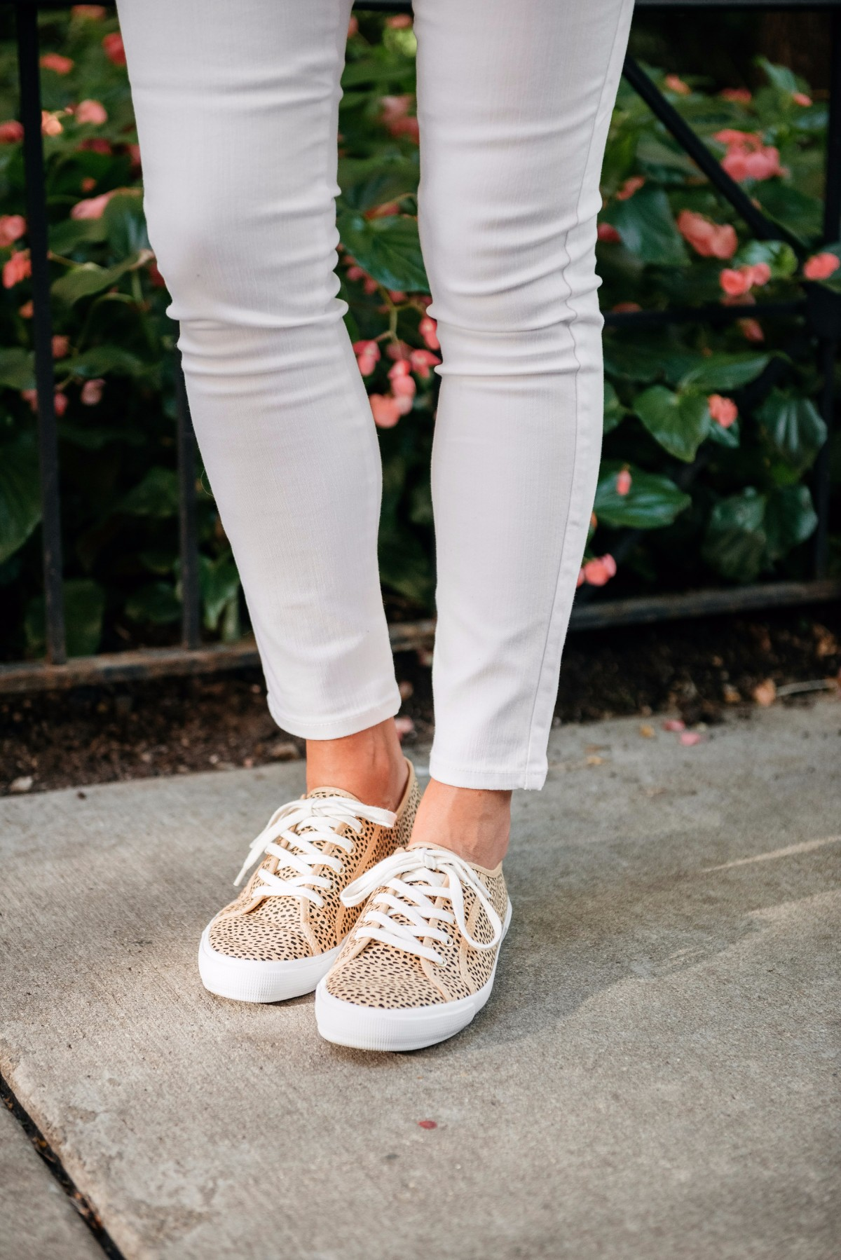 old-navy-leopard-sneakers — bows \u0026 sequins