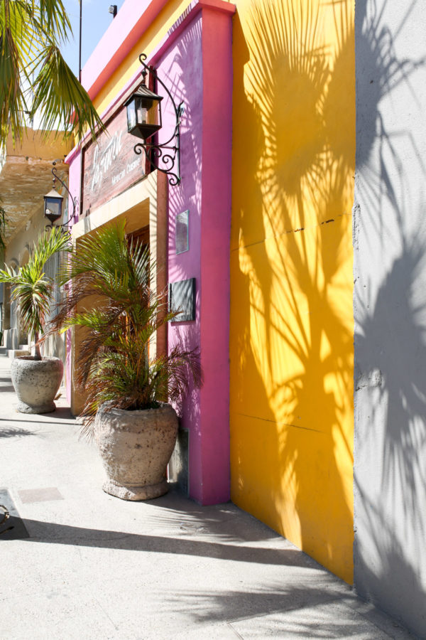 Jessica Sturdy shares photos from exploring San Jose del Cabo in Mexico. Colorful facades and palm tree shadows