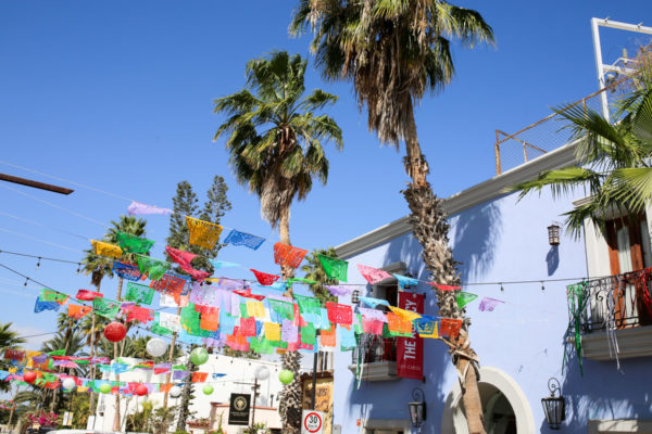Jessica Sturdy shares photos from exploring San Jose del Cabo in Mexico. Colorful banners and palm trees