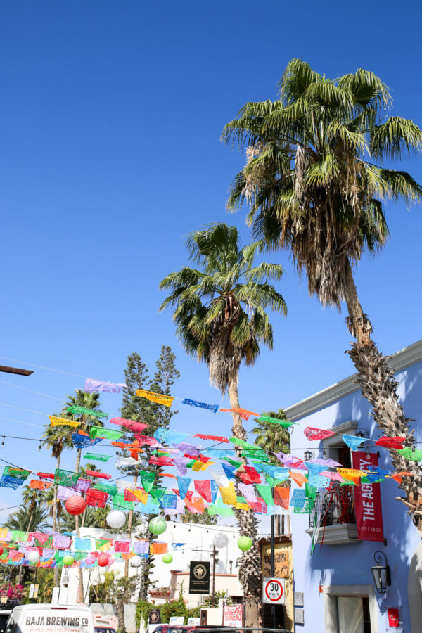 Jessica Sturdy shares photos from exploring San Jose del Cabo in Mexico. Colorful flags and palm trees