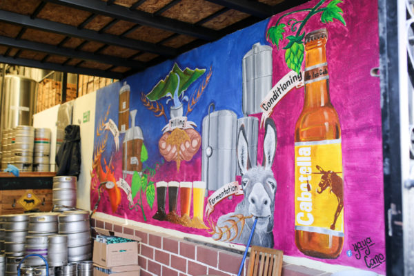 Jessica Sturdy shares photos from exploring San Jose del Cabo in Mexico. Baja Brewery