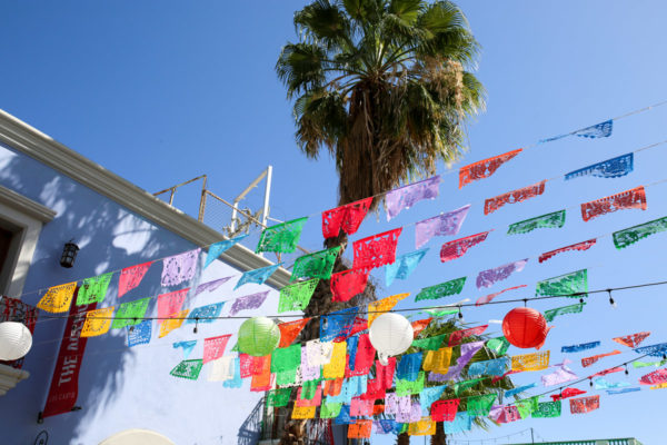 Jessica Sturdy shares photos from exploring San Jose del Cabo in Mexico. Colorful flags