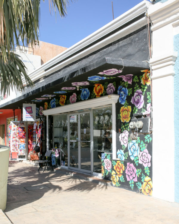 Jessica Sturdy shares photos from exploring San Jose del Cabo in Mexico. Beautiful murals on the storefronts