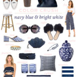 Color Crush: Navy Blue & Bright White