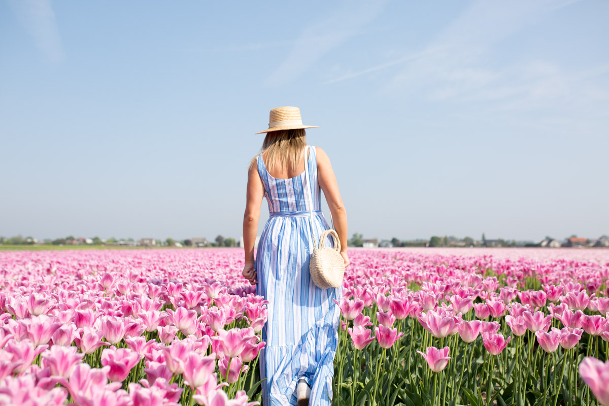 Jessica Sturdy in Amsterdam, Netherlands in a pink tulip field wearing a blue and white striped Vineyard Vines dress and a Clare V round straw bag.