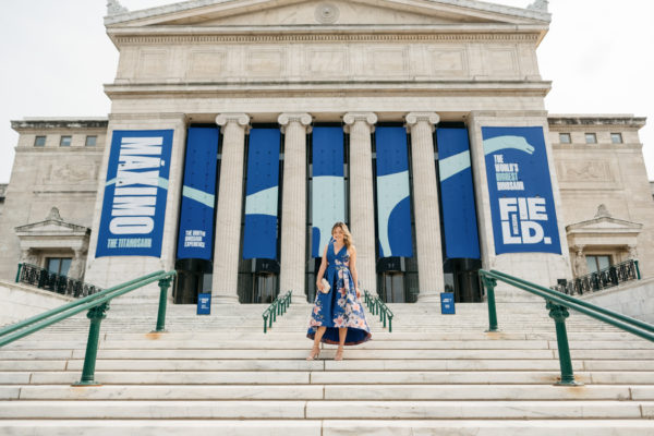 Chicago lifestyle blogger Jessica Sturdy on the steps in front of the Field Museum wearing a blue floral dress from Eliza J.