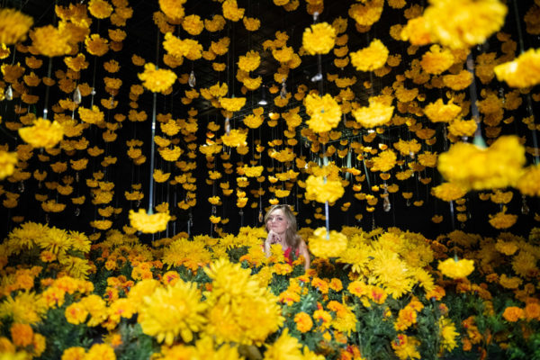Chicago blogger Bows & Sequins at Happy Place in the yellow daisy flower room.