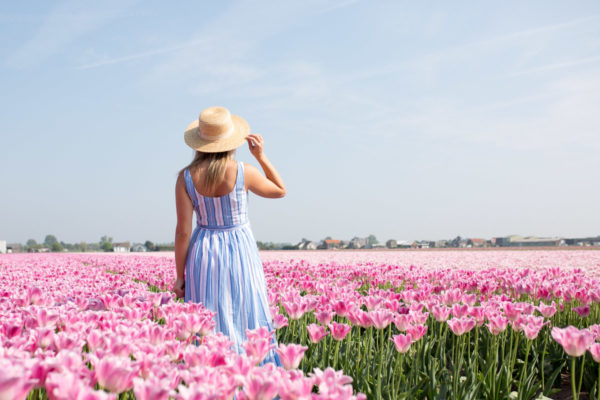 Travel influencer Jessica Sturdy wearing a striped maxi dress and a straw hat in a pink tulip field in Amsterdam.