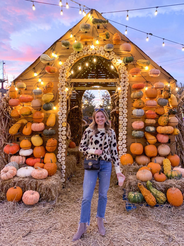 Chicago blogger Jessica Sturdy of Bows & Sequins at Jack's Pumpkin Pop-Up